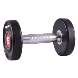 Hantla inSPORTline Profi 10 kg