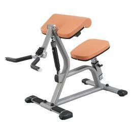 Maszyna na mięśnie bicepsa BODY SOLID Hydraulicline CBC400