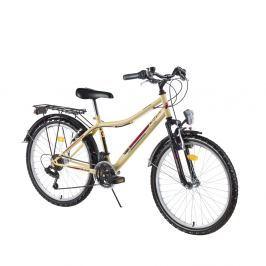 Młodzieżowy rower górski DHS Travel 2431 24