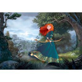 Fototapeta Disney Merida waleczna flizelinowa