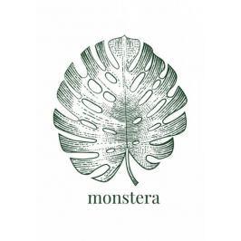 Liść VIII - monstera - plakat