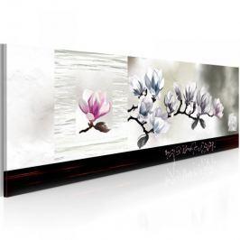 Obraz - Przebudzenie magnolii