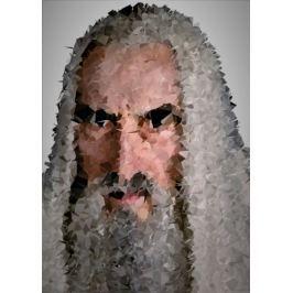 POLYamory - Saruman, Władca Pierścieni - plakat