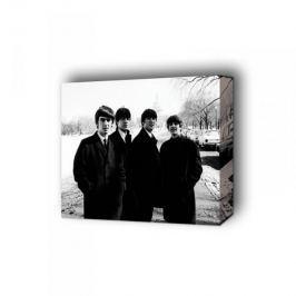The Beatles w Białym Domu - obraz na płótnie