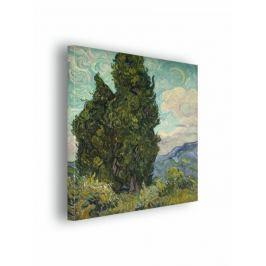 Cyprysy - Vincent van Gogh - obraz na płótnie