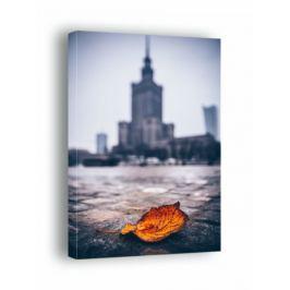 Warszawa Pałac Kultury i Nauki Jesienna Impresja - obraz na płótnie