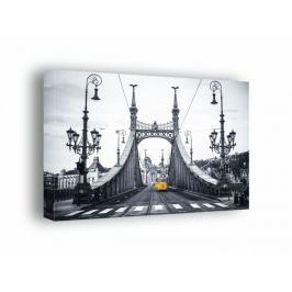Budapeszt, most wolności - obraz na płótnie