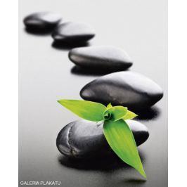 Zen Stones Green - plakat