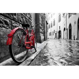 Czerwony rower - plakat
