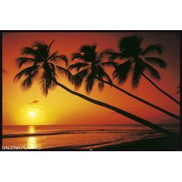 Zachód Słońca na Plaży - Tropiki - plakat