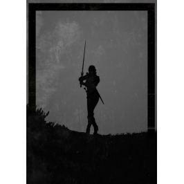 Dawn of Heroes - Ciri, Wiedźmin - plakat