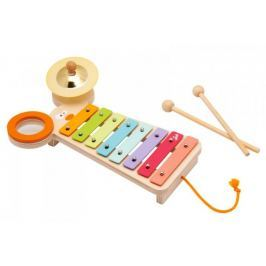 Kolorowy, ksylofon z myszką