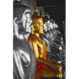 Złoty Budda - plakat