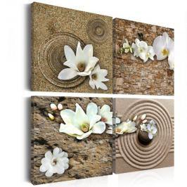 Obraz - Białe kwiaty