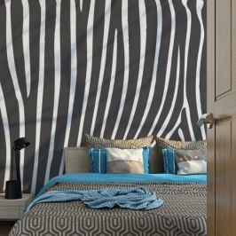 Fototapeta - Zebra pattern (czarno-biały)