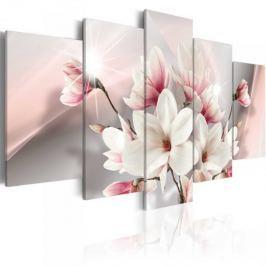 Obraz - Magnolia w rozkwicie