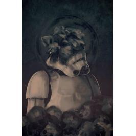 Star Wars Skull Trooper - plakat premium