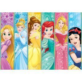 Fototapeta Disney Princess panel Księżniczki flizelinowa