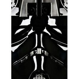 Face It! Star Wars Gwiezdne Wojny - Pilot Trooper - plakat