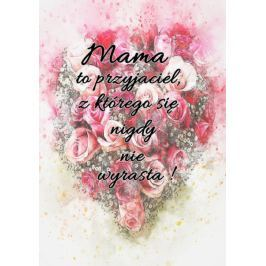 Mama przyjaciel - plakat
