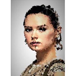 POLYamory - Rey, Gwiezdne Wojny Star Wars - plakat