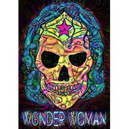 PsychoSkulls, Wonder Woman, DC Comics - plakat