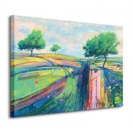 Three Moorland Trees - Obraz na płótnie
