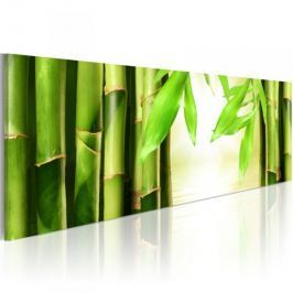 Obraz - Bamboo gate