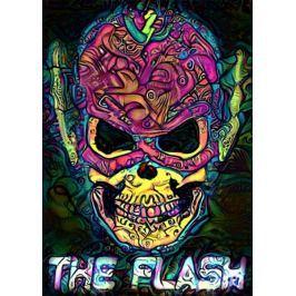 PsychoSkulls, The Flash, DC Comics - plakat