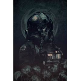 Star Wars Skull Pilot - plakat premium
