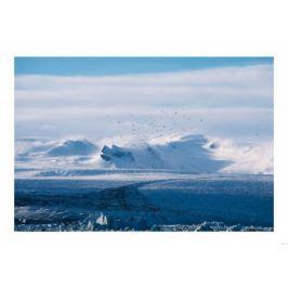 Zimowe widoki - plakat