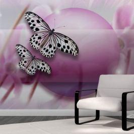 Fototapeta - Fly, Butterfly!