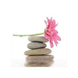 Spa. Kamienie zen i kwiaty - plakat premium