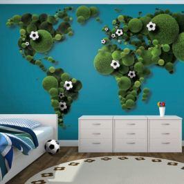 Fototapeta - A World of football