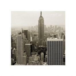 Nowy Jork. Manhattan panorama w sepii - plakat premium