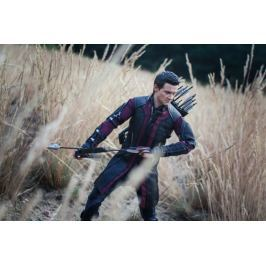 Avengers: Czas ultrona - Hawkeye ver3 - plakat