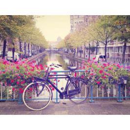 Amsterdam Wiosną Rower wśród Kwiatów - plakat