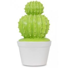 Pojemnik Kaktus