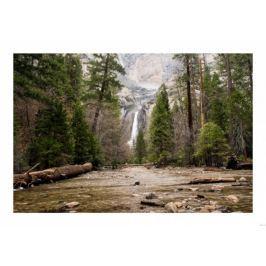 Wodospad w lesie - plakat