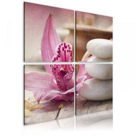 Obraz - Orchidea i zen
