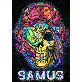 PsychoSkulls, Samus, Metroid - plakat