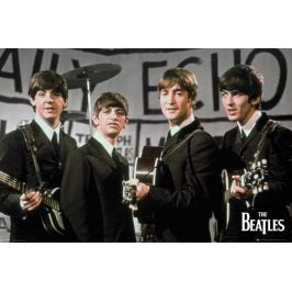 The Beatles Daily Echo - plakat Fototapety