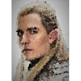 POLYamory - Legolas, Władca Pierścieni - plakat Fototapety