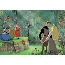 Fototapeta KOPCIUSZEK Disney Princess Taniec na flizelinie