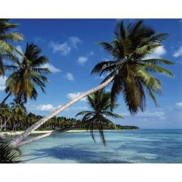 Rajska plaża - Tropiki - plakat Fototapety