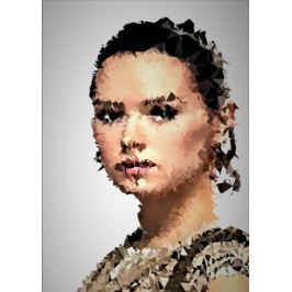POLYamory - Rey, Gwiezdne Wojny Star Wars - plakat Fototapety