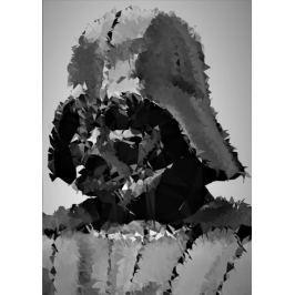POLYamory - Darth Vader, Gwiezdne Wojny Star Wars - plakat Fototapety