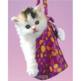 Kotek w Torebce Keith Kimberlin - plakat Fototapety