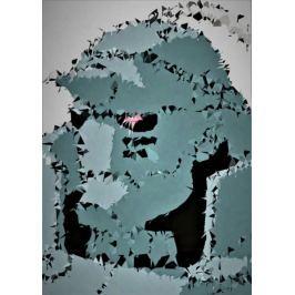 POLYamory - Alphonse, Fullmetal Alchemist - plakat Fototapety