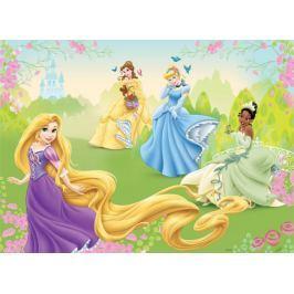 Fototapeta na flizelinie Princess XXXL Tapety